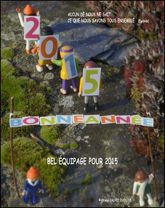 bonne année 2015 olivier calvez