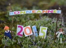 maquette bonne année 2015 n°5