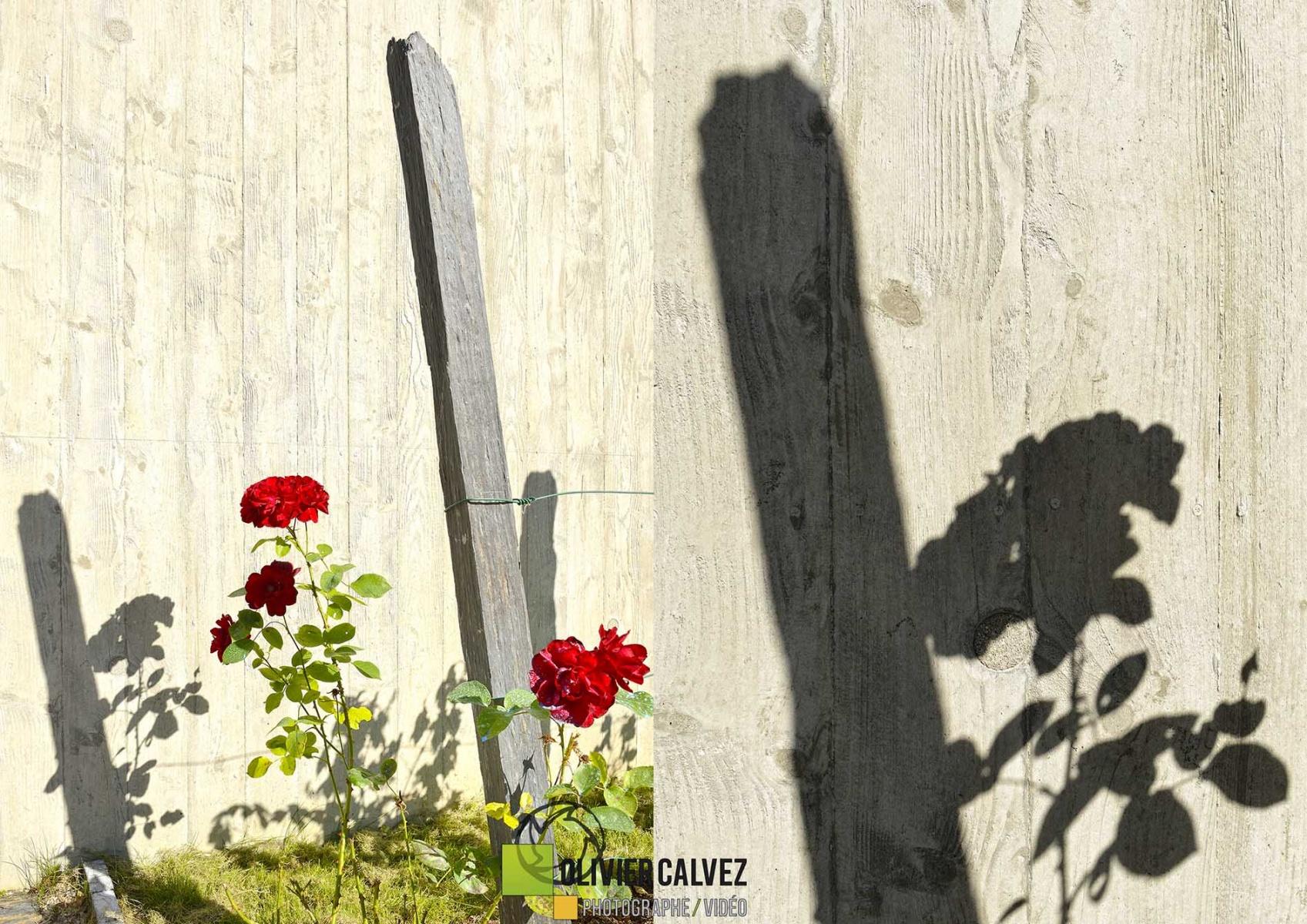 Photo par Olivier Calvez - Photographe de communication